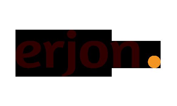 logo erjon webdesign steenwijk